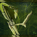 Abstract Snake And Bird by Sherri's - Of Palm Springs