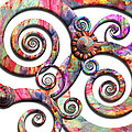 Abstract - Spirals - Wonderland by Mike Savad