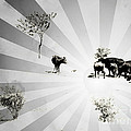 Abstract Vintage Cows by Gabriela Insuratelu
