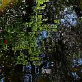 Abstract Water Reflection by Denise Mazzocco