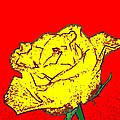 Abstract Yellow Rose by Will Borden