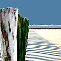 Abstracted Beach Dune Fence by Elaine Plesser