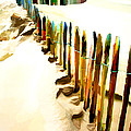 Abstracted March Of The Colored Dune Fence by Elaine Plesser