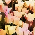 Abstracted Tulips by Alice Gipson