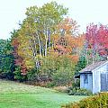 Acadia Autumn 2014 by Lena Hatch