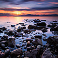 Acadia Beach by Alexis Birkill