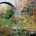 Acadia Carriage Bridge by Chris Scroggins