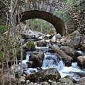 Acadia National Park Bridge by Lena Hatch
