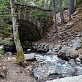 Acadia National Park Carriage Road Bridge by Lena Hatch