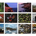 Acadia National Park Greetings by Juergen Roth