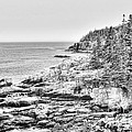 Acadia National Park In Bw by Emily Kay