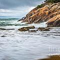Acadia Surge by Susan Cole Kelly