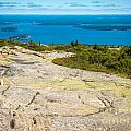 Acadia Views by DAC Photo
