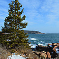 Acadian Shores In Winter by Meandering Photography