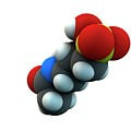 Acamprosate Alcoholism Treatment Drug Molecule by Ella Maru Studio / Science Photo Library