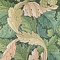 Acanthus Wallpaper Design by William Morris