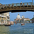 Accademia Bridge In Venice Italy by Heiko Koehrer-Wagner