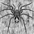 Aced Spider by Gregory Dyer