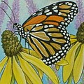 Aceo Monarch On Wild Grey Headed Coneflower by Debrah Nelson