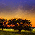 Acid Sunset by Marina Likholat