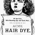 Acme Hair Dye Ad, C1890 by Granger