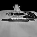 Acoustic Black And White by Steve Stephenson