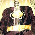 Acoustic Guitar - In The Studio by Brian Howard