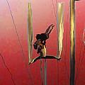 Acrobatic Aerial Artistry1 by Anne Mott