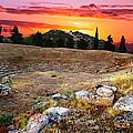 Acropolis Of Eretria  by Ivan Zeitlin