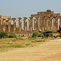 Acropolis Of Selinunte by Caroline Stella