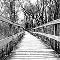 Across The Bridge by Valentino Visentini