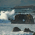 Action On The Rocks by Donna Blackhall