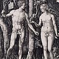 Adam And Eve Engraving by Albrecht Durer
