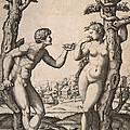 Adam And Eve by Marcantonio Raimondi