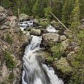Adams Falls Rocky Mountain Np by Richard Smith