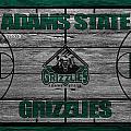 Adams State Grizzlies by Joe Hamilton