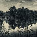 Adda River 3 by Roberto Pagani