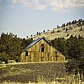Adin Barn by Sherri Meyer
