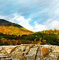 Adirondack Autumn by Betty LaRue