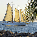 Sailing On The Adirondack In Key West by Bob Slitzan