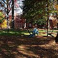 Adirondack Chairs 2 - Davidson College by Paulette B Wright
