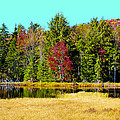 Adirondack Color Iv by David Patterson