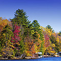 Adirondack Color Ix by David Patterson