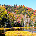 Adirondack Color V by David Patterson
