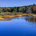 Adirondack Color Vii by David Patterson