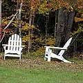 Adirondack Foliage by Kerri Mortenson