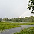 Adirondack Rainbow Treat by Thomas Phillips