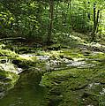 Adirondack Stream by Karen Kluglein