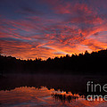 Adirondack Sunrise by Chris Scroggins