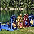 Adirondacks At Jasper Lodge by Dennis Hedberg